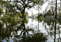 AndyLevin_Cajun_reflections (1 of 1)